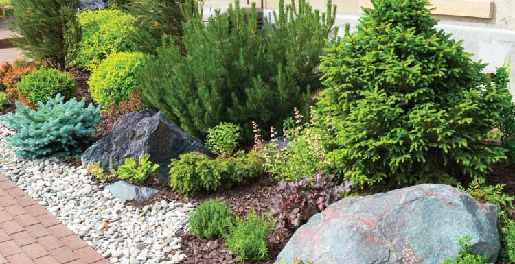 Reputable Landscaping Experts Covington - Big Easy Landscaping