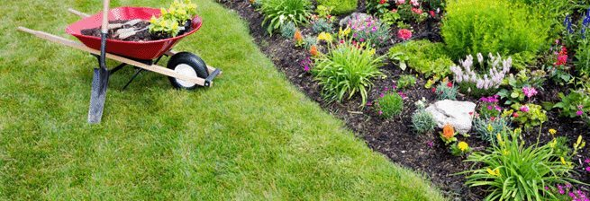 Slidell diverse landscape maintenance services - Big Easy Landscaping