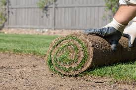New Orleans Sod & Fill Dirt Landscape Enhancement - Big Easy Landscaping
