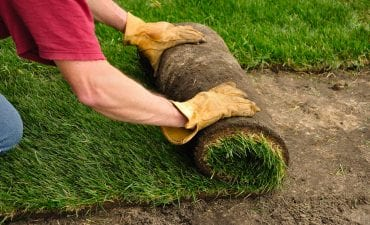Big Easy Landscaping Enhancement Services New Orleans - Sod and Fill Dirt