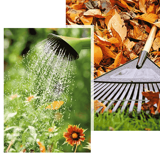 landscaping company New Orleans