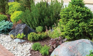 Lawn and Landscape Maintenance Service New Orleans - Big Easy Landscaping