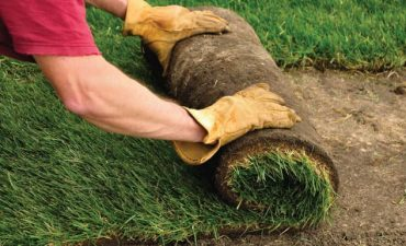 landscape grass sod service in New Orleans - Big Easy Landscaping