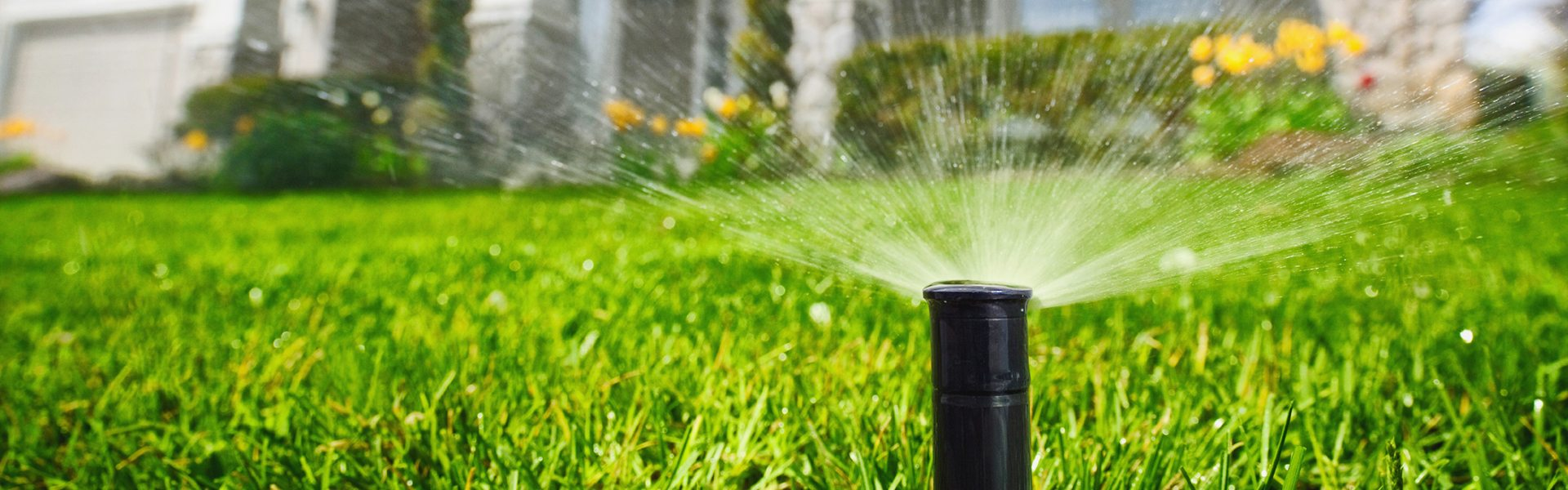 Big Easy Landscaping Irrigation service New Orleans - Big Easy Landscaping