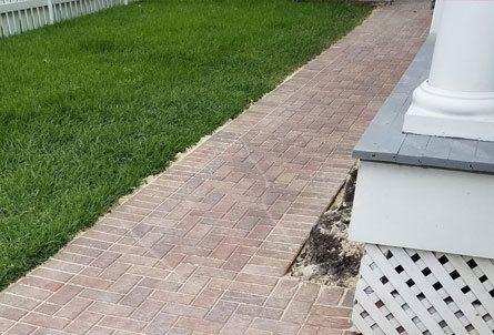 Landscaping management in New Orleans - Big Easy Landscaping