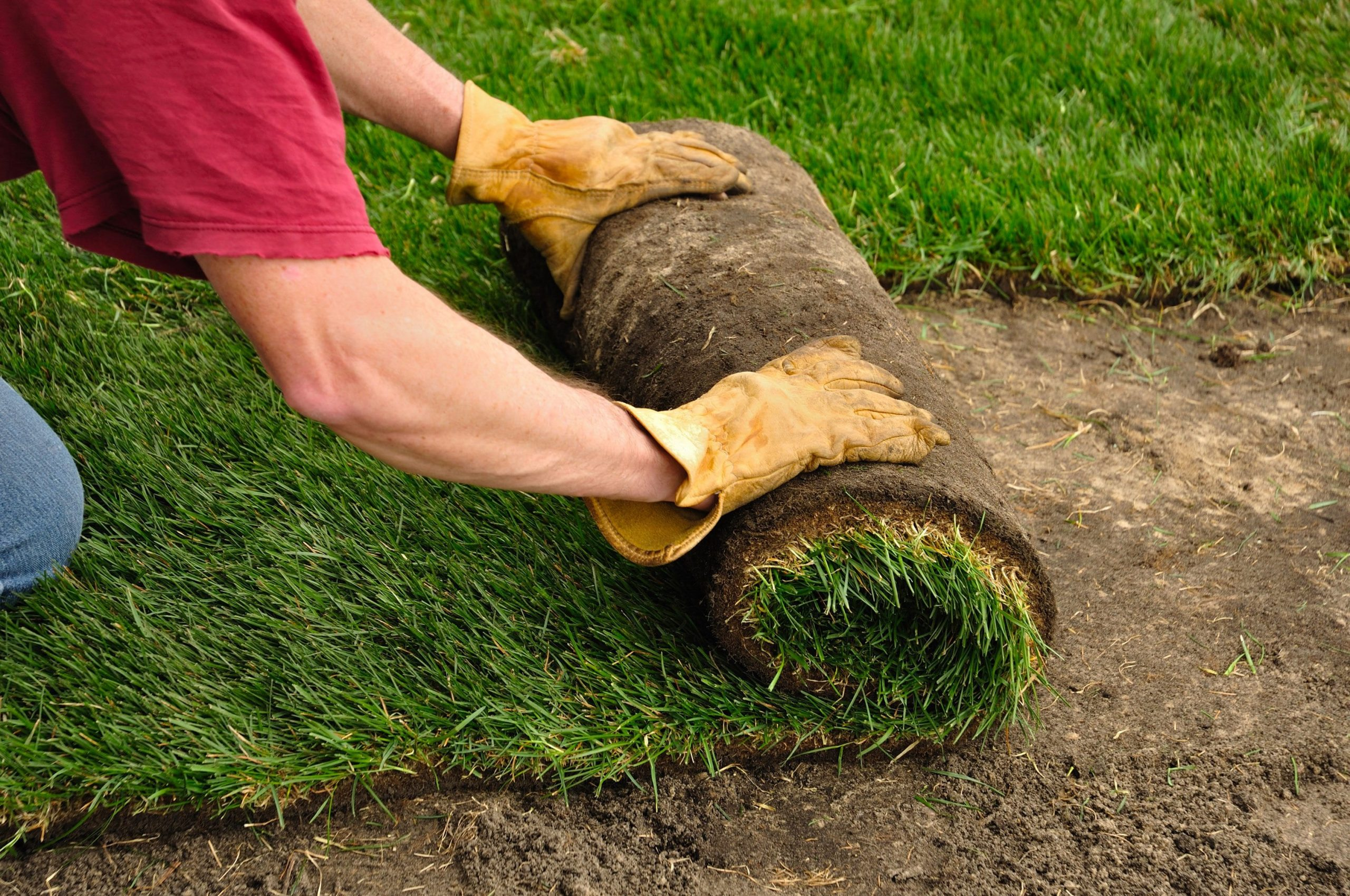 New Orleans Sod and Fill Dirt - Big Easy Landscaping
