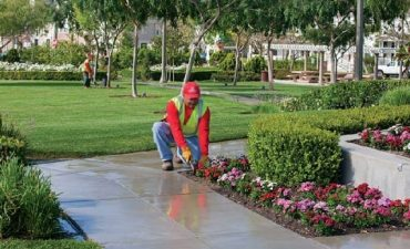 Landscape Management Services - Landscaper In New Orleans - Big Easy Landscaping