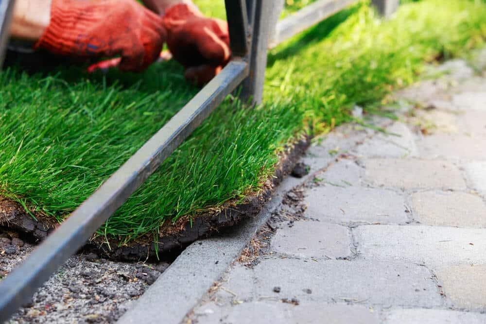 garden sod - Big Easy Landscaping
