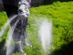 fertilizer for sod - Big Easy Landscaping