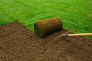 pieces of sod - Big Easy Landscaping