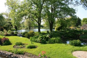 trees for gardens - Big Easy Landscaping