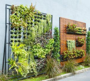 vertical gardens - Big Easy Landscaping