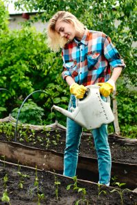 water your sod - Big Easy Landscaping