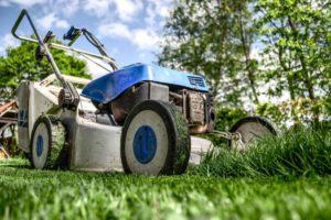 lawn care secrets new orleans