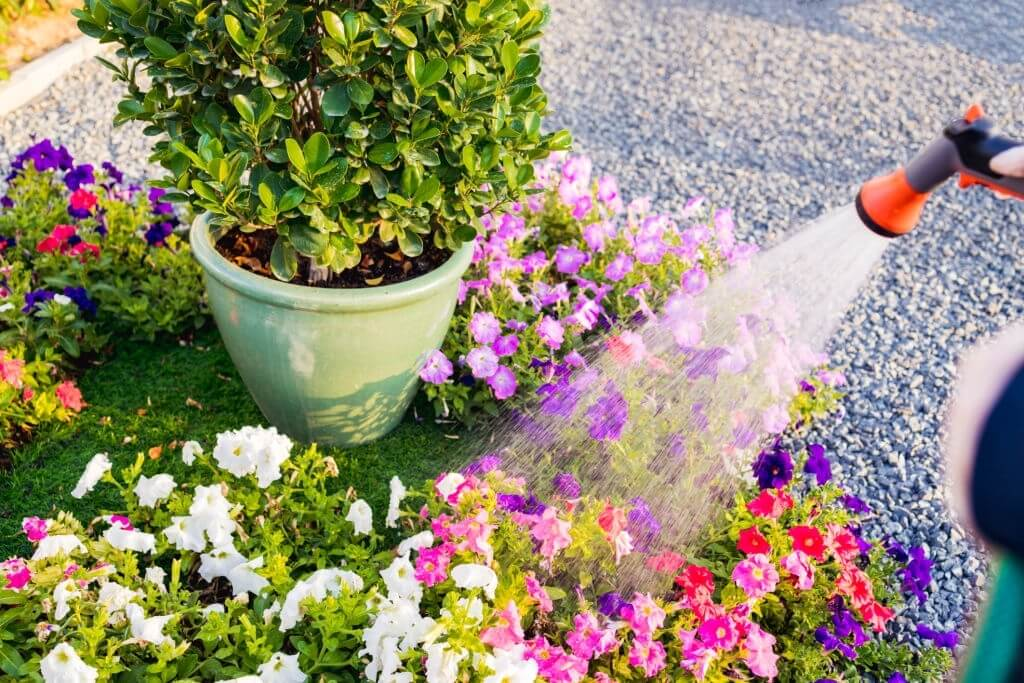 Cleanup Checklist for Landscaping