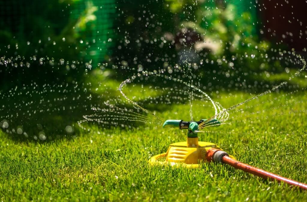 save water in your landscape