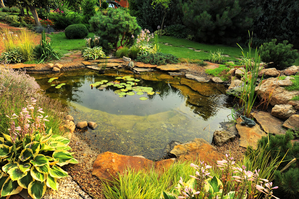 water landscaping - Big Easy Landscaping